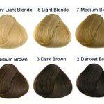 Hair Tone Chart